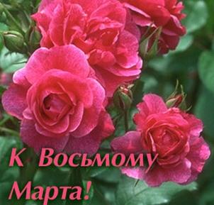 http://dnepr.info/images/big/41390/card0717641716.jpg