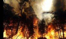 Спасатели предупреждают об опасности пожаров — уже погибло четыре человека