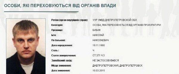 бибик1
