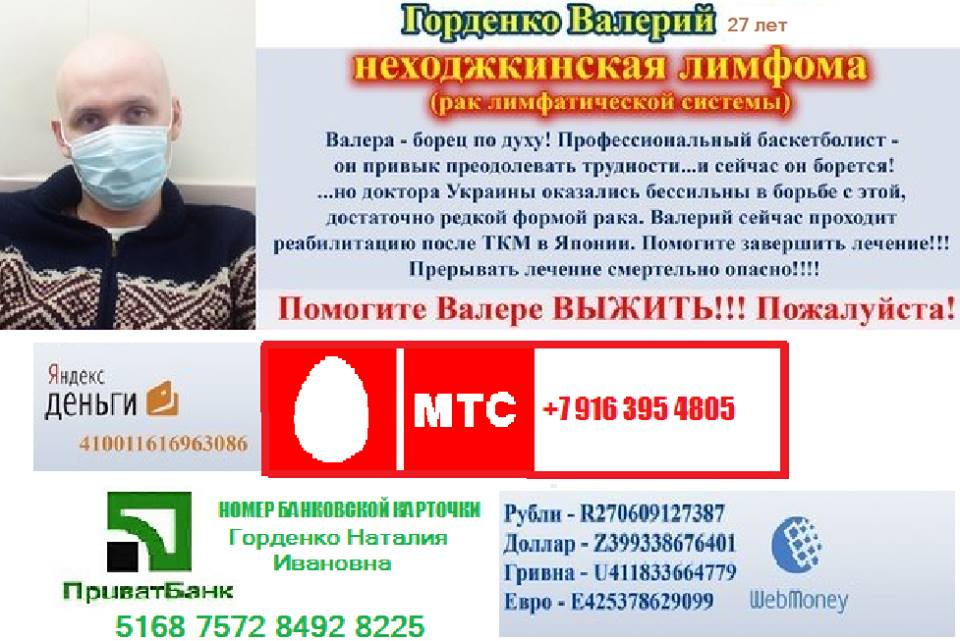 11222402_448231575385164_96480793242022841_n