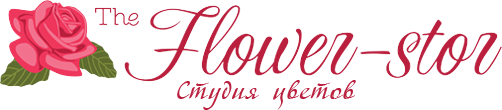 flow-logo-1422012963