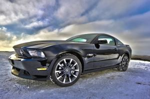 ford-mustang-auto-vehicle-80465-large