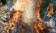 За сжигание опавших листьев жителей Днепра и области будут штрафовать