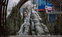 Елочный базар: где продадут елку подешевле?