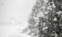 Днепр заметает снегом