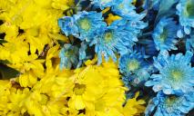 Украинцев ждет новый государственный праздник