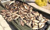 На Днепропетровщине задержали браконьеров, выловивших 100 килограмм рыбы с икрой