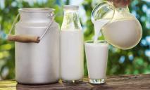 В Украине домашнее молоко может стать вне закона