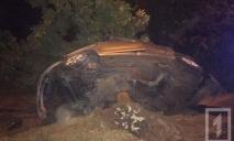 На Днепропетровщине произошла разрушительная автокатастрофа