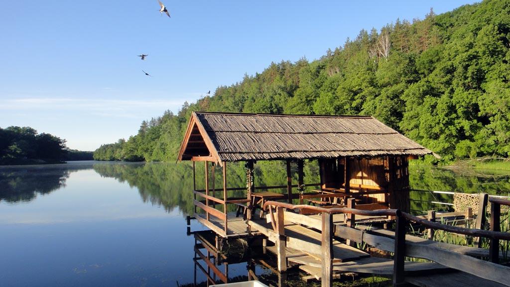 Гомольшанские леса (2)