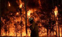 В Украине прогнозируют чрезвычайный уровень пожарной опасности