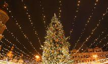 Сколько денег власти Днепра потратят на елку и украшения к Новому году