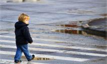 Светофоры – наше все: днепряне просят «спасти» пешеходов