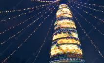 Зима близко: главная елка Днепра подорожала