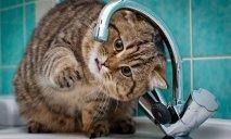 Завтра часть жителей Днепра останется без воды