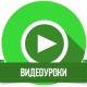 Увлекательные видеоуроки английского от LinguaCats
