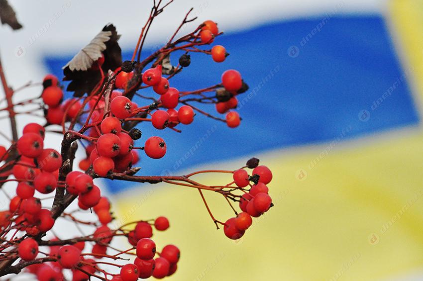 Вгосударстве Украина минутой молчания почтили память жертв Голодомора