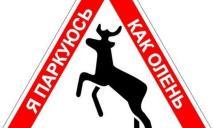 Очередные «герои» парковки попали в объектив Dnepr.Info