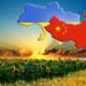 Особенности делового сотрудничества с предприятиями Китая