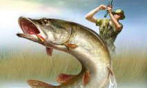 На Днепропетровщине поймали гигантскую рыбу