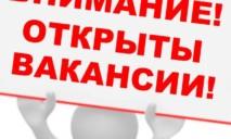 Торговый дом «Вина мира»: ищем достойных кандидатов на рабочие места
