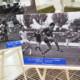 100-летие «Днепра»: юбилей или «танцы на костях»