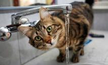 В Днепре отключат воду: адреса
