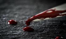 18 ударов ножом: брат напал на сестру