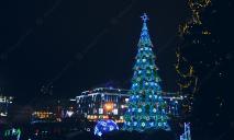 Новогодняя елка в центре Днепра: как проходит сборка