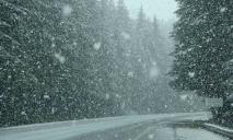 Непогода: что обещают чиновники