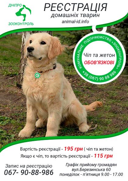Новости Днепра про Внимание, важная информация для владельцев животных