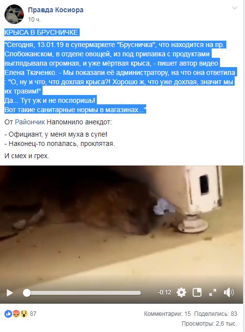 Новости Днепра про В одном из магазинов Днепра нашли дохлую крысу