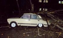 Ураган в Днепре и области: последствия непогоды
