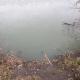 Ужасный запах и мертвая рыба: озеро в Днепре превратилось в бедствие