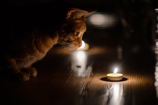 Отключения света в Днепре: где сегодня не будет электричества. Новости Днепра