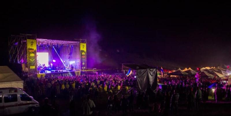 Полиция открыла уголовное дело из-за инцидента на фестивале. Новости Днепра