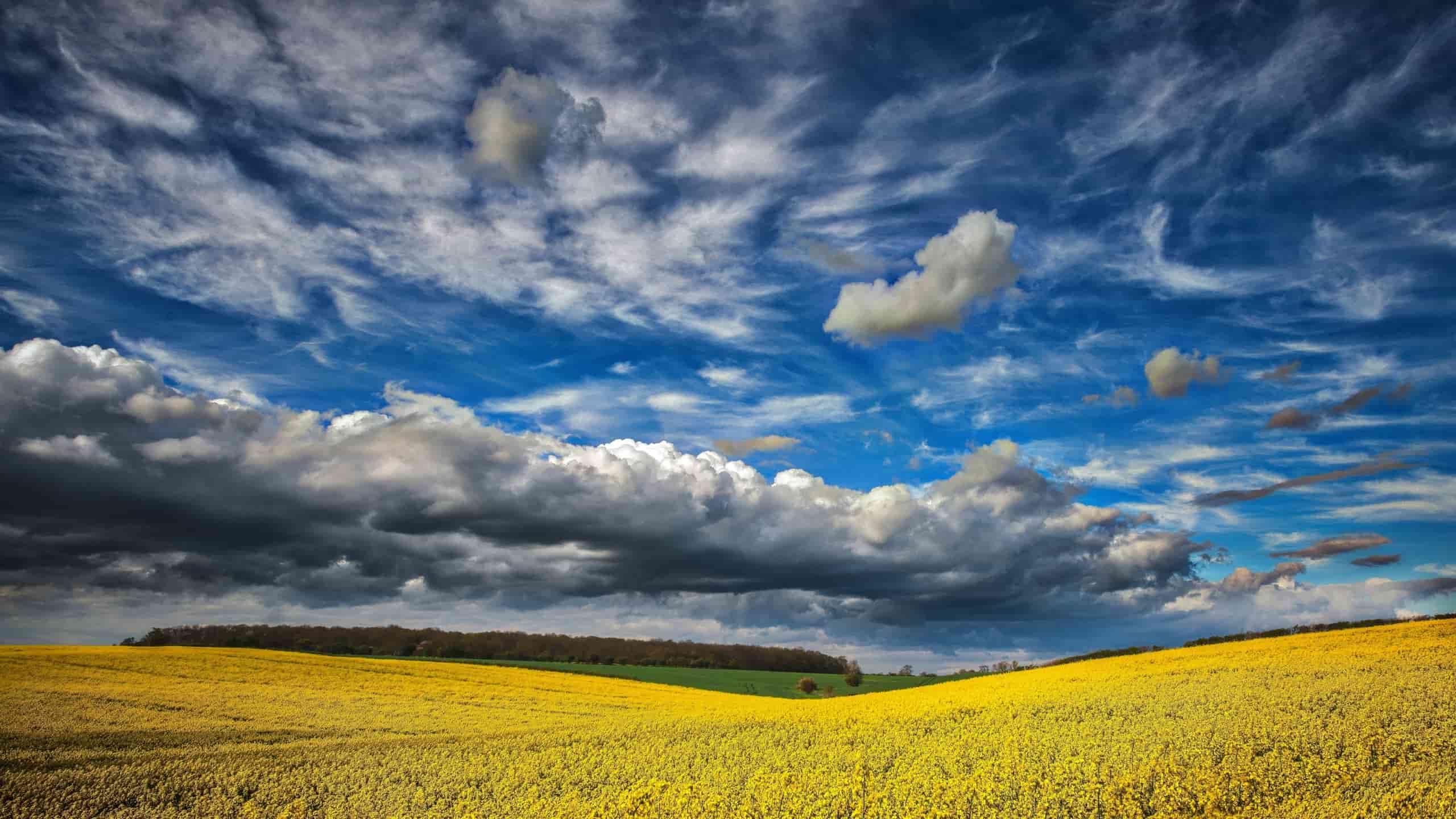 Погода в Днепре 26 июня: облачно и жарко. Новости Днепра
