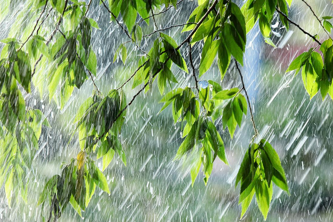 Погода 4 июня в Днепре: дожди с грозами. Новости Днепра
