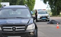 Под Днепром насмерть сбит пешеход: разыскиваются свидетели ДТП