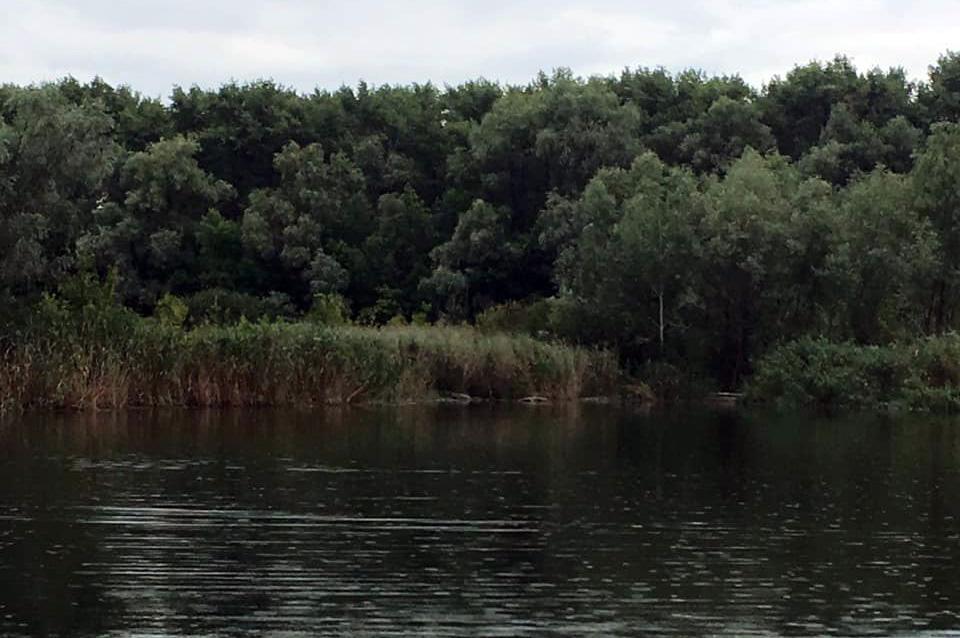 В реке обнаружен труп мужчины. Новости Днепра