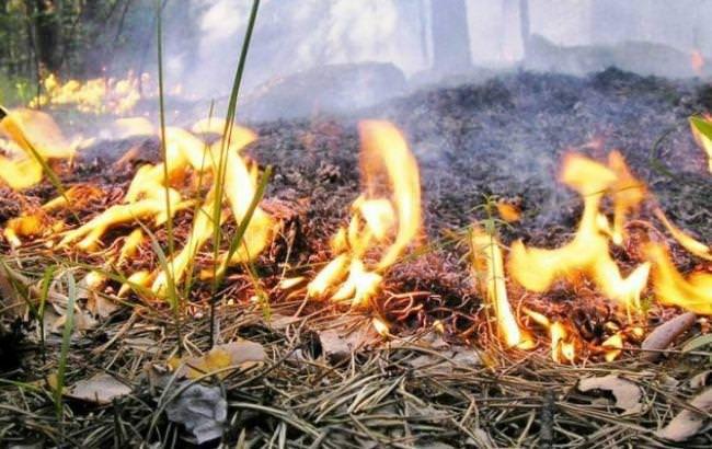 Жителей Днепра и области предупредили об опасности . Новости Днепра