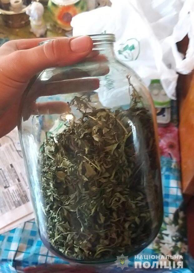 Марихуана на продажу: полиция выявила пожилого наркоделка. Новости Днепра