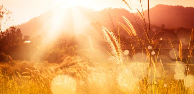 Погода в Днепре на 28 августа: жара начинает спадать. Новости Днепра