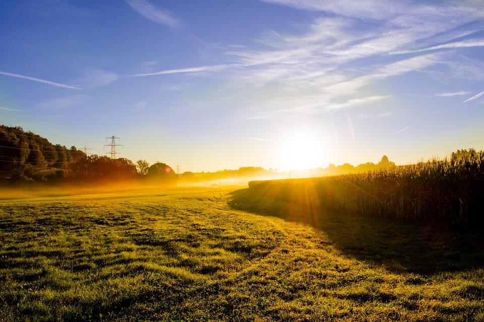 Погода на 8 августа: в Днепре будет солнечно и тепло. Новости Днепра