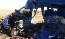 Жуткое ДТП с маршруткой и фурой: 9 погибших