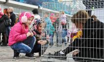 В центре Днепра сидела девушка в клетке: что происходило