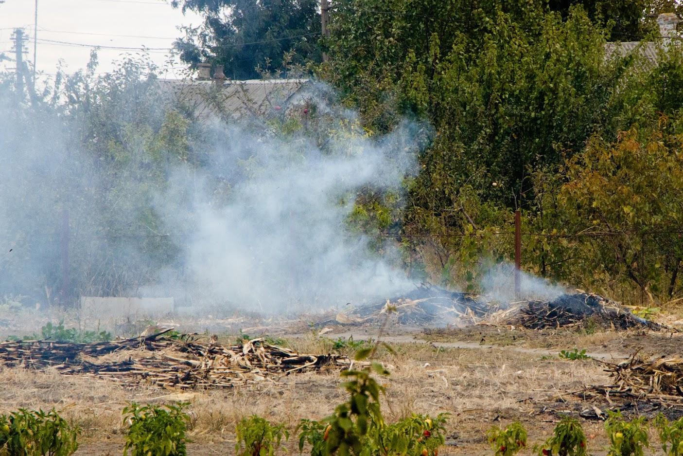 Что грозит днепрянам за сжигание сухих листьев: подробности. Новости Днепра