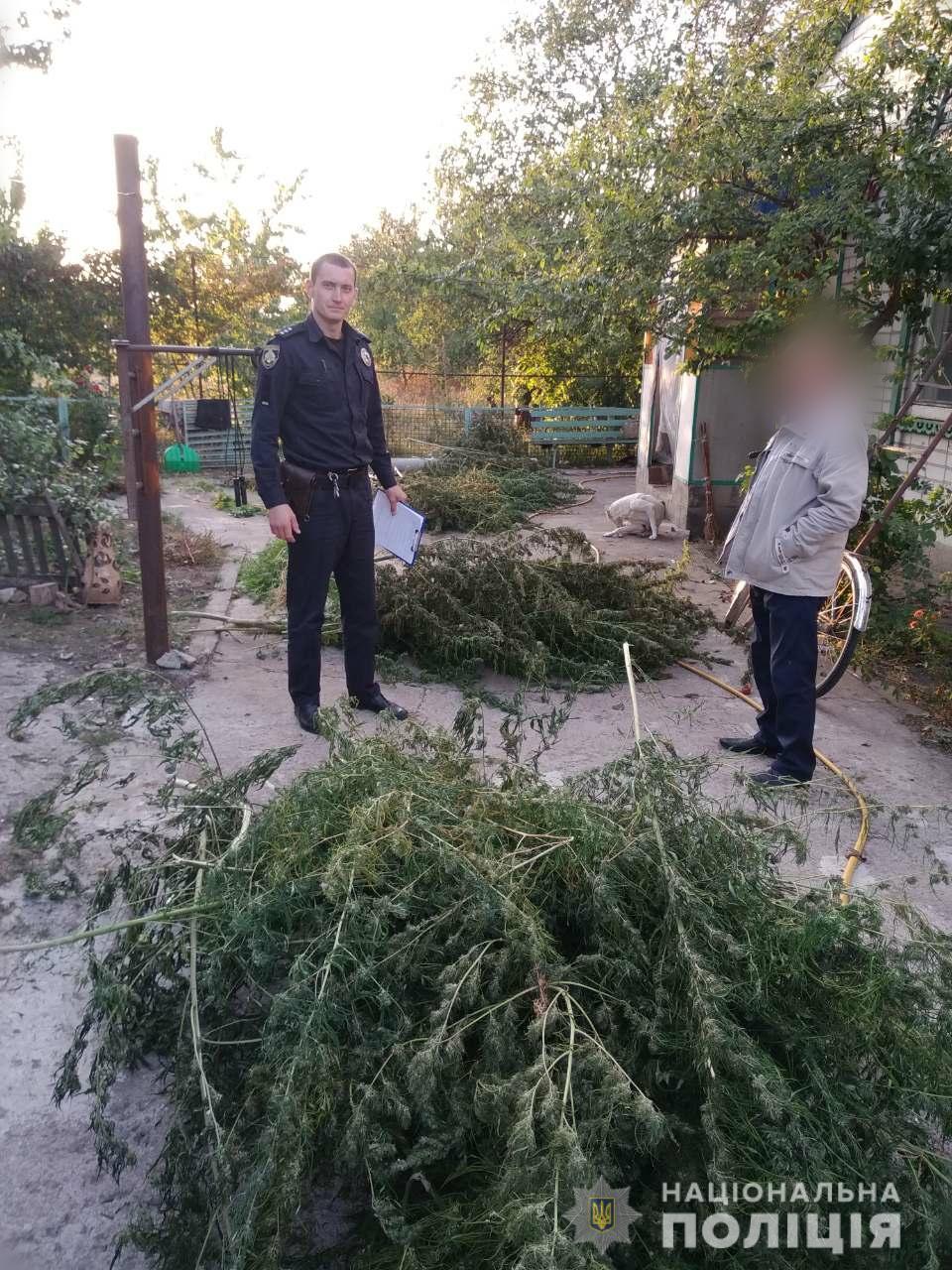 Собирал урожай на глазах у полиции: наркодилеру крупно не повезло. Новости Днепра