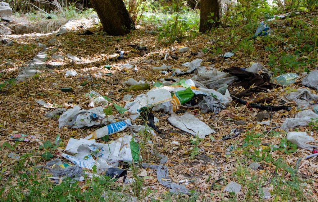 Волонтеры и люди из горсовета вышли на субботник в парке «Зеленый Гай». Новости Днепра