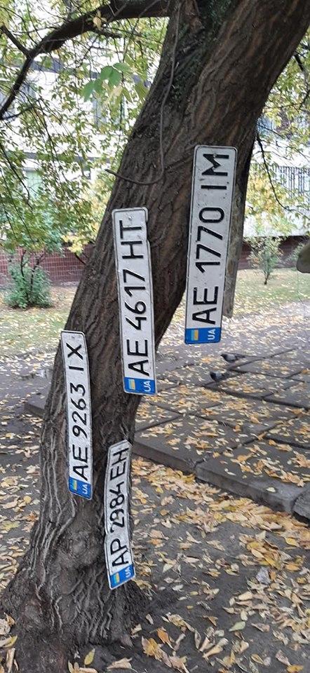 На дерево повесили номерные знаки. Новости Днепра